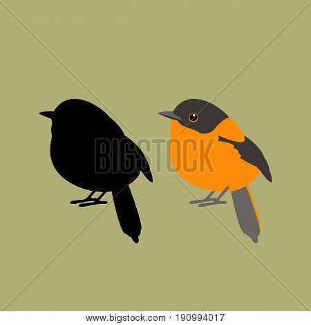 black orange flycatcher  vector illustration style Flat silhouette black