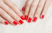 Manicure - Beauty treatment photo of nice manicured woman fingernails with red nail polish. Top view poster
