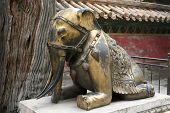 Gold resting elephant at the Forbidden City in CHina poster