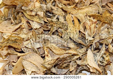 Background Laid Out Of Dried Yellow And Brown Leaves Of A Lily Of The Valley Plant