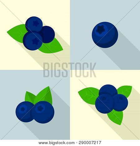 Bilberry Icons Set. Flat Set Of Bilberry Vector Icons For Web Design