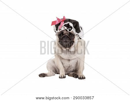Unhappy Pug Puppy Dog With Shower Cap, Sitting Down, Ready For Taking A Bath, Isolated On White Back