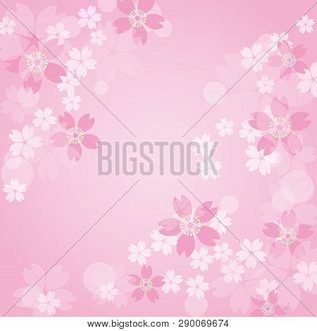 Pink Sakura Frame On A Pick Background
