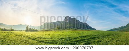 Panorama Of Countryside At Sunrise. Beautiful Scenery With Trees In Morning Haze On A Grassy Field.