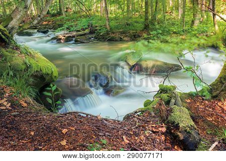 Cascade On The Forest River In Springtime. Beautiful Nature Scenery. View From The Edge Of A Bank. L