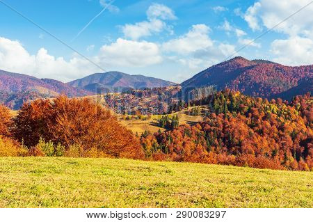 Autumn Countryside In Mountains. Grassy Meadows And Forested Hills. Wonderful Nature Scenery In The