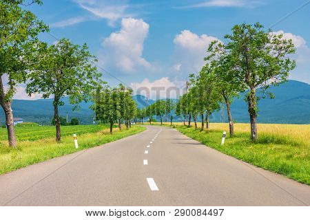Countryside Road In To The Mountains. Trees And Rural Fields On Both Sides Along The Winding Way. Ca