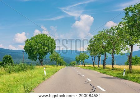 Countryside Road In To The Mountains. Trees And Rural Fields On Both Sides Along The Way. Wonderful