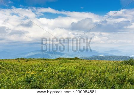 Grassy Alpine Meadow In Mountains. Ridge Slightly Visible In The Distance. Cloudy Sky