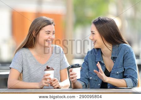 Two Happy Friends Talking And Drinking Sitting In A Park