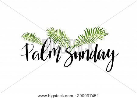 Green Palm Leafs Vector Icon. Palm Sunday Text Handwritten Font.