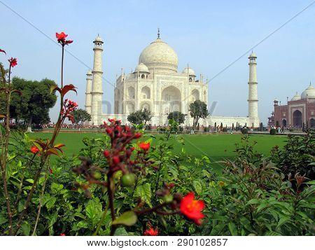 Taj Mahal, Agra, India - 02.08.2010: Taj Mahal In Colors. Marble Taj Mahal Far. Flowers Grow In The