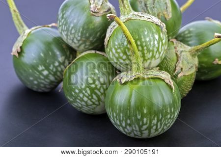 Thai Eggplant, Scintific Name Is (solanum Virginianum L.) - Vegetable Herb On Black Dish
