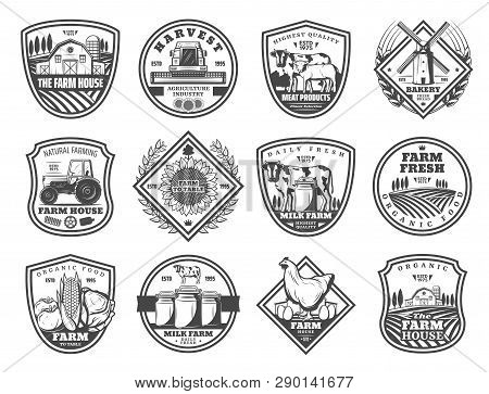 Farming And Agriculture Industry Monochrome Icons. Vector Farm House, Combine Harvester, Meat And Wi