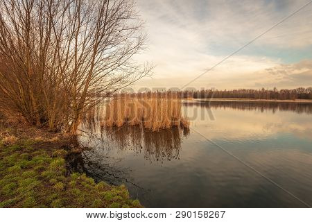 Picturesque Image With Yellowed Reed Plants Reflected In The Mirror Smooth Water Surface Of A Small