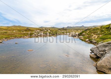 View Over Snowy River In Kosciuszko National Park, Nsw, Australia. Nature Background With Plants And
