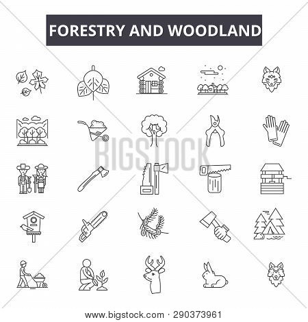 Forestry And Woodland Line Icons For Web And Mobile Design. Editable Stroke Signs. Forestry And Wood