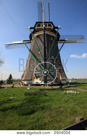 Hölländische Windmühlen
