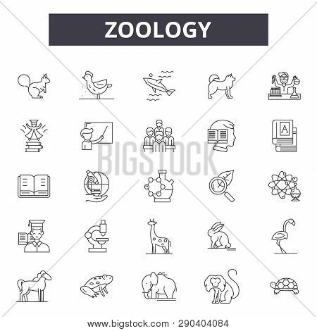 Zoology Line Icons For Web And Mobile Design. Editable Stroke Signs. Zoology  Outline Concept Illust