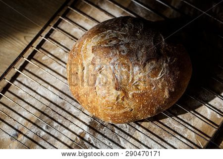 Fresh homemade bread made of sourdough resting on a wire rack. Homemade baking concept. Artisan bread with golden crispy crust. poster