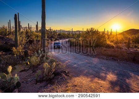 Saguaro, Arizona, Usa - October 18, 2018 : Car Driving A Dirt Road Between Cactuses Of Saguaro Natio