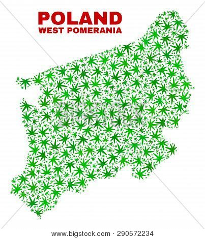 Vector Marijuana West Pomeranian Voivodeship Map Mosaic. Template With Green Weed Leaves For Cannabi