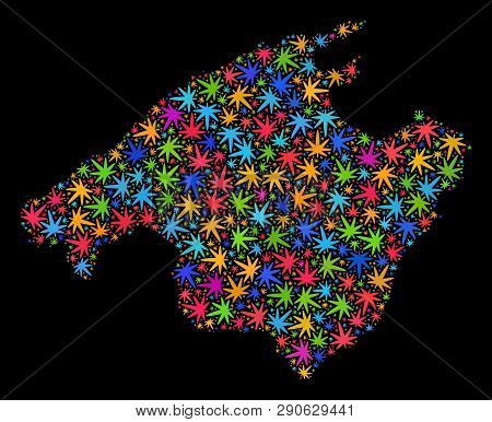 Bright Vector Marijuana Mallorca Map Mosaic On A Black Background. Template With Bright Weed Leaves