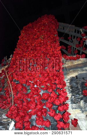 Looking Up At A Giant Wall, Chimney Covered With Red Poppy Flowers For Veterans Day, Armistice Day A