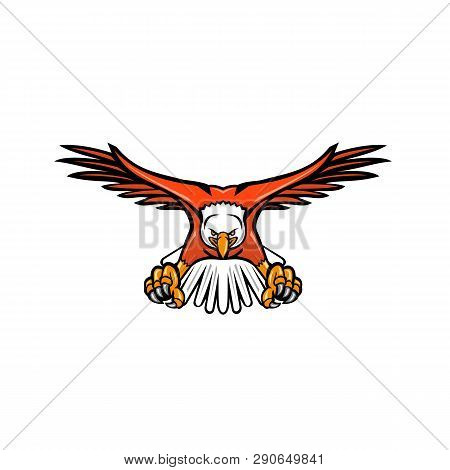 Mascot Icon Illustration Of A Bald Eagle, Sea Eagle Or American Eagle Swooping Down With Talons Faci