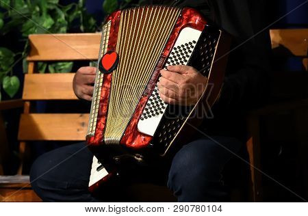 Man Playing Accordion, Hands On The Keys
