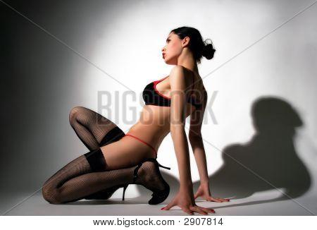 Sensual Lady