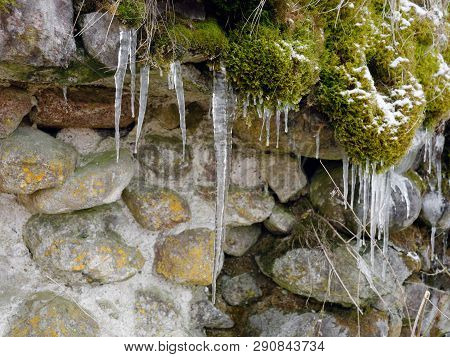 Green Moss And Stones. Spring Icicles Dripping
