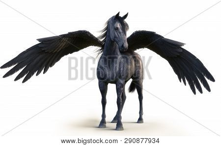Mythical Black Pegasus Posing On White Isolated Background. 3d Rendering