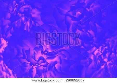 Bright Ultramarine And Pink Magenta Color. Gradient. Flower Pattern