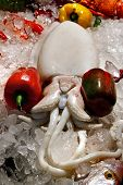 octopus ice seafood market food traditional octopus indigenous cooking asian poster