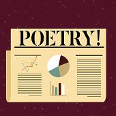 Conceptual hand writing showing Poetry. Business photo text Literary work Expression of feelings ideas with rhythm Poems writing Colorful Layout Design Plan of Text Line, Bar and Pie Chart. poster