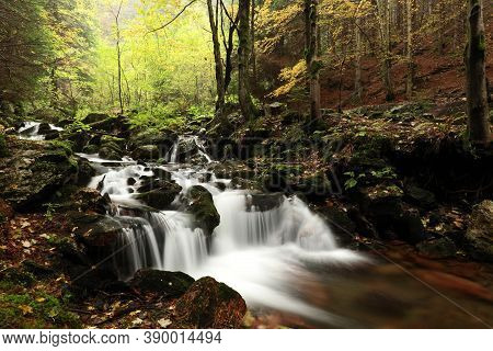 Forest stream Nature autumn landscape Nature background river Nature landscape Nature landscape Nature background landscape yellow Nature trees water Nature background landscape waterfall Nature landscape background Nature landscape Nature background.