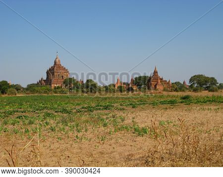 Bagan, Myanmar - 06 Jan 2010: Ruins Of The Ancient Pagoda, Bagan, Myanmar