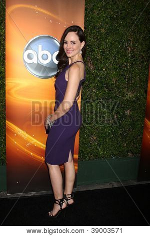 LOS ANGELES - SEP 28:  Madeleine Stowe arrives at the ABC Sunday Night Event at Lexington Social Club on September 28, 2012 in Los Angeles, CA