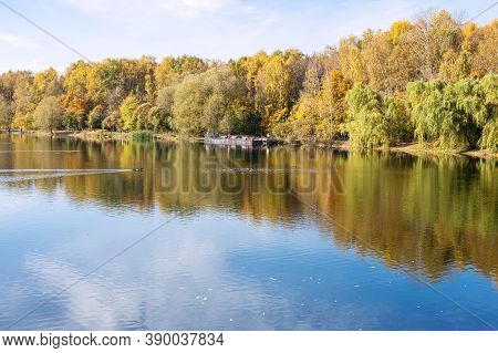 View Of Calm Pond In City Park On Sunny Autumn Day