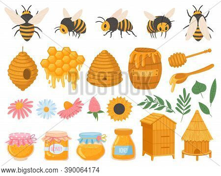 Beekeeping. Apiculture Products Various Honey In Glass Jars. Honeycomb, Beeswax, Beehive, Flowers An