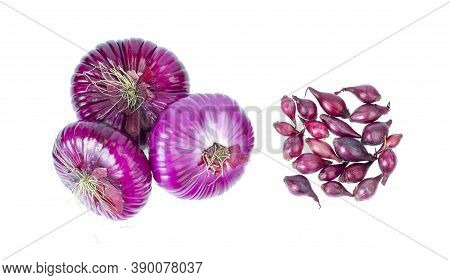Red Onion Bulbs And Small Bulbs For Planting On White Background. Studio Photo