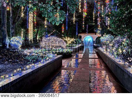 Christmas Illuminations In The Park At Night During A Light Rain, Beautiful Reflection Of Illuminati