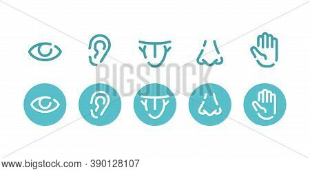 Five Basic Human Senses - Touch, Sight, Hearing, Smell And Taste - Sensing Organs Icons - Eye, Mouth