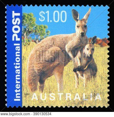 Australia - Circa 2001: A Stamp Printed In Australia Shows Kangaroos, Series, Circa 2001