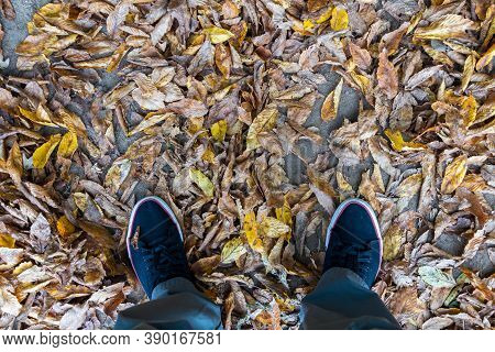 Feet On The Ground Covered With Fallen Autumn Leaves