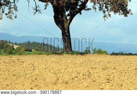 Arable Soil And Field In Spring