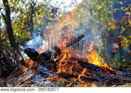 Farmer Burns Green Waste In The Concept Of Bonfire, Bonfire Outdoors, Agriculture. Fallen Leaves, Br