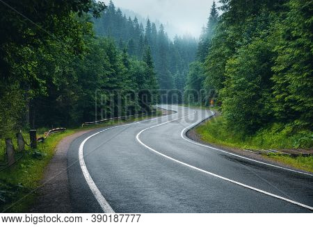 Road In Foggy Forest In Rainy Day In Spring. Beautiful Mountain Curved Roadway, Trees With Green Fol