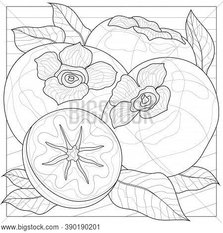 Persimmon. Fruit.coloring Book Antistress For Children And Adults. Zen-tangle Style.black And White